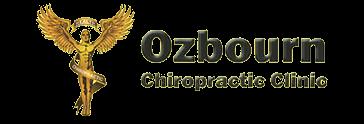 ozbourn chircopractic anna il